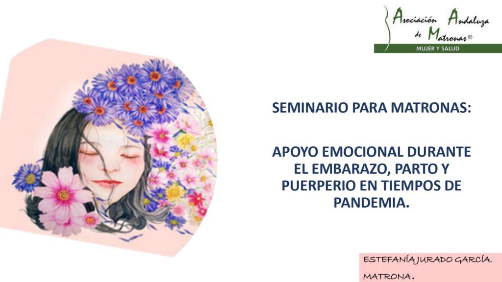 APOYO EMOCIONAL DURANTE EL EMBARAZO, PARTO Y PUERPERIO EN TIEMPOS DE PANDEMIA.